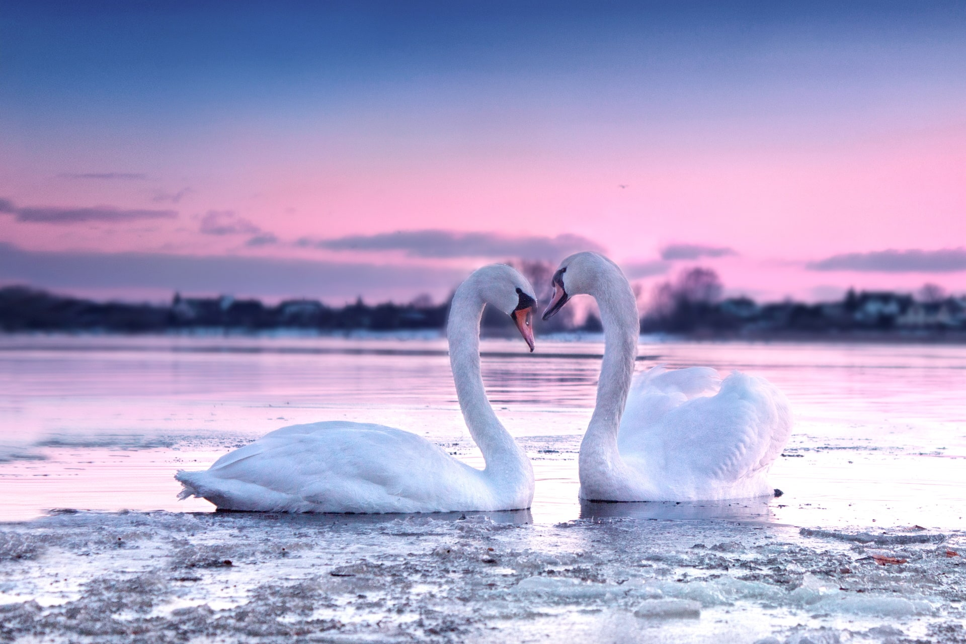 Liebeszauber - Hilfe zur Partnerrückführung